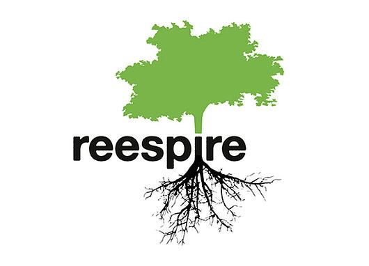 Logo REESPIRE