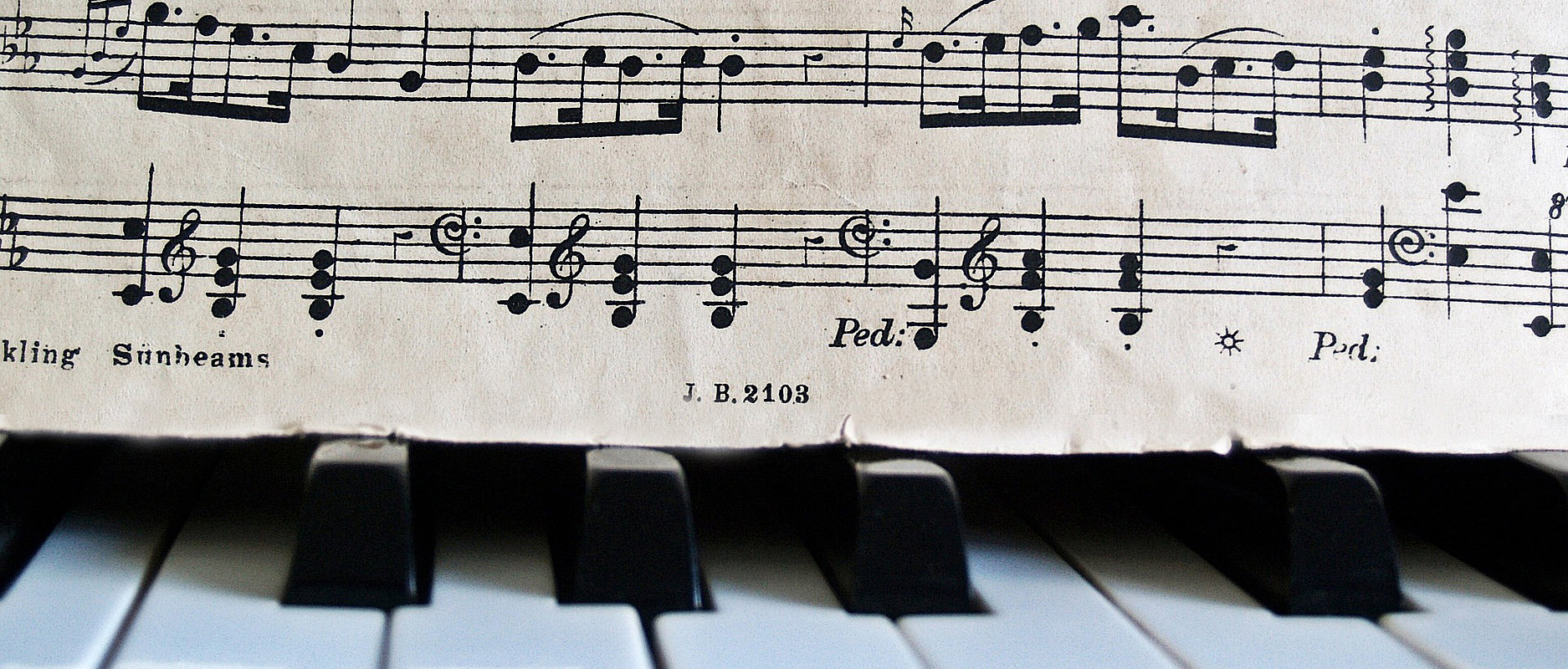 Master Interprétation musicale spécialisée