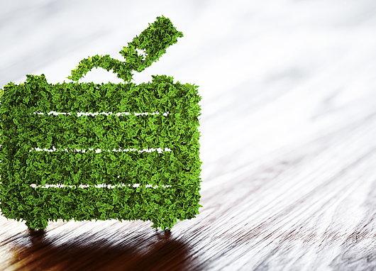 Valise en matière végétale