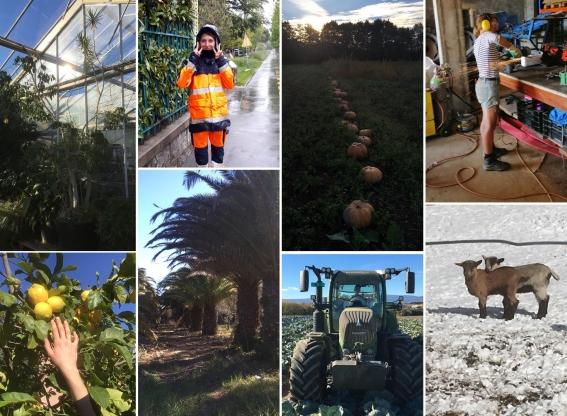 Pourquoi j'ai repris des études pour devenir ingénieure en agronomie