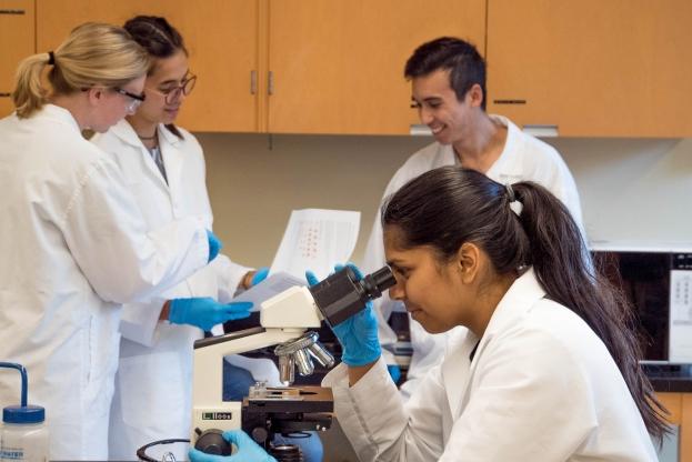 Etudiante observant au microscope